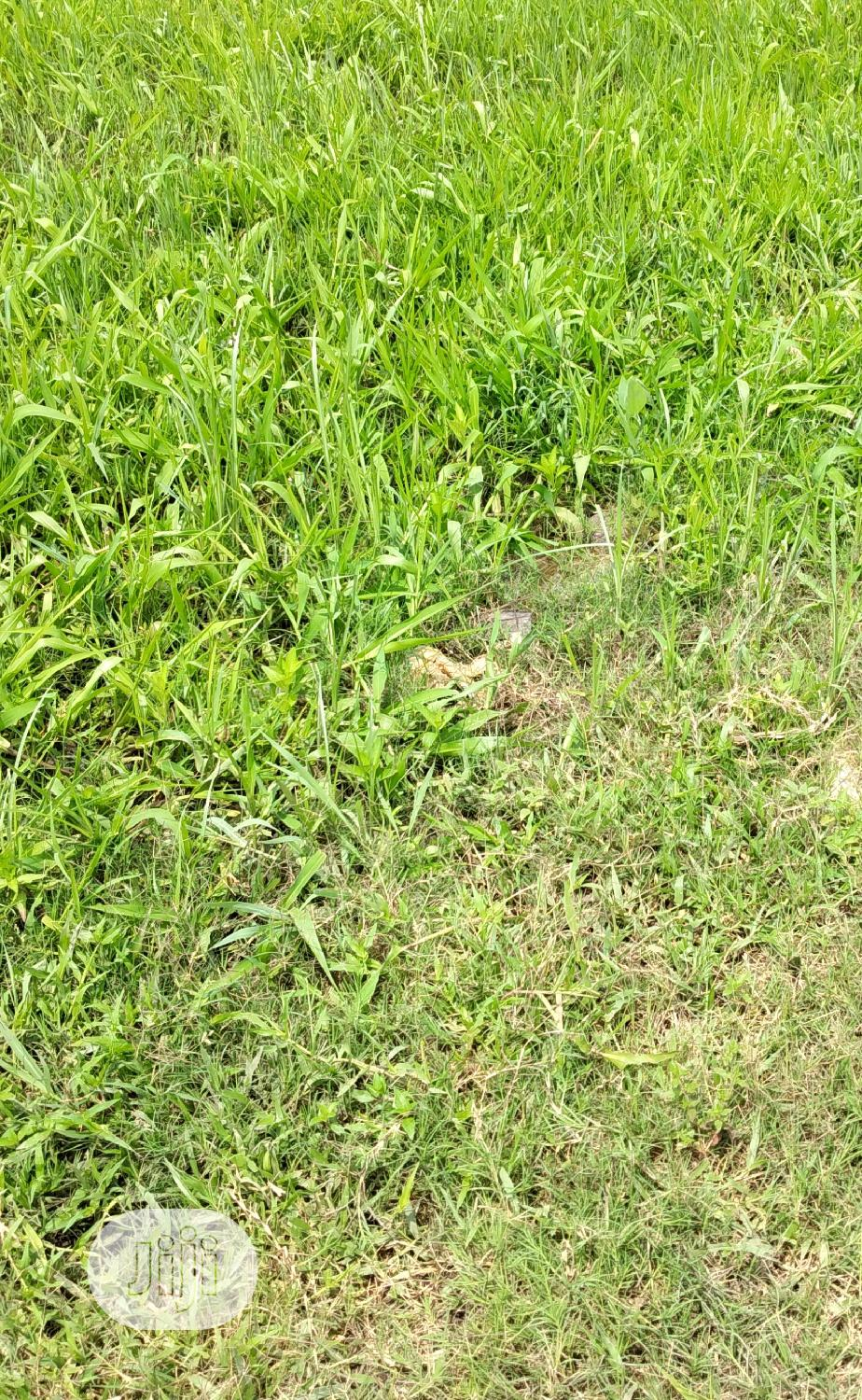 500sqm Land For Lease At Off Admiralty Way Lekki Phase 1