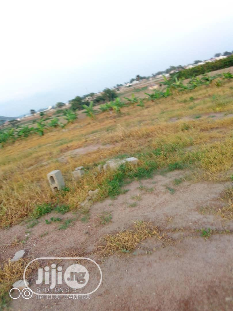 Farm With Structures, Borehole, C Of O, Ready For Immediate Farming | Land & Plots For Sale for sale in Bwari, Abuja (FCT) State, Nigeria