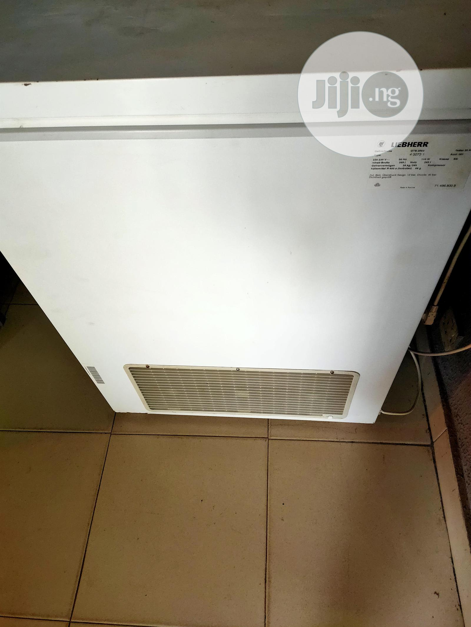 Archive: Freezer For Ice Block With Cooling Fan