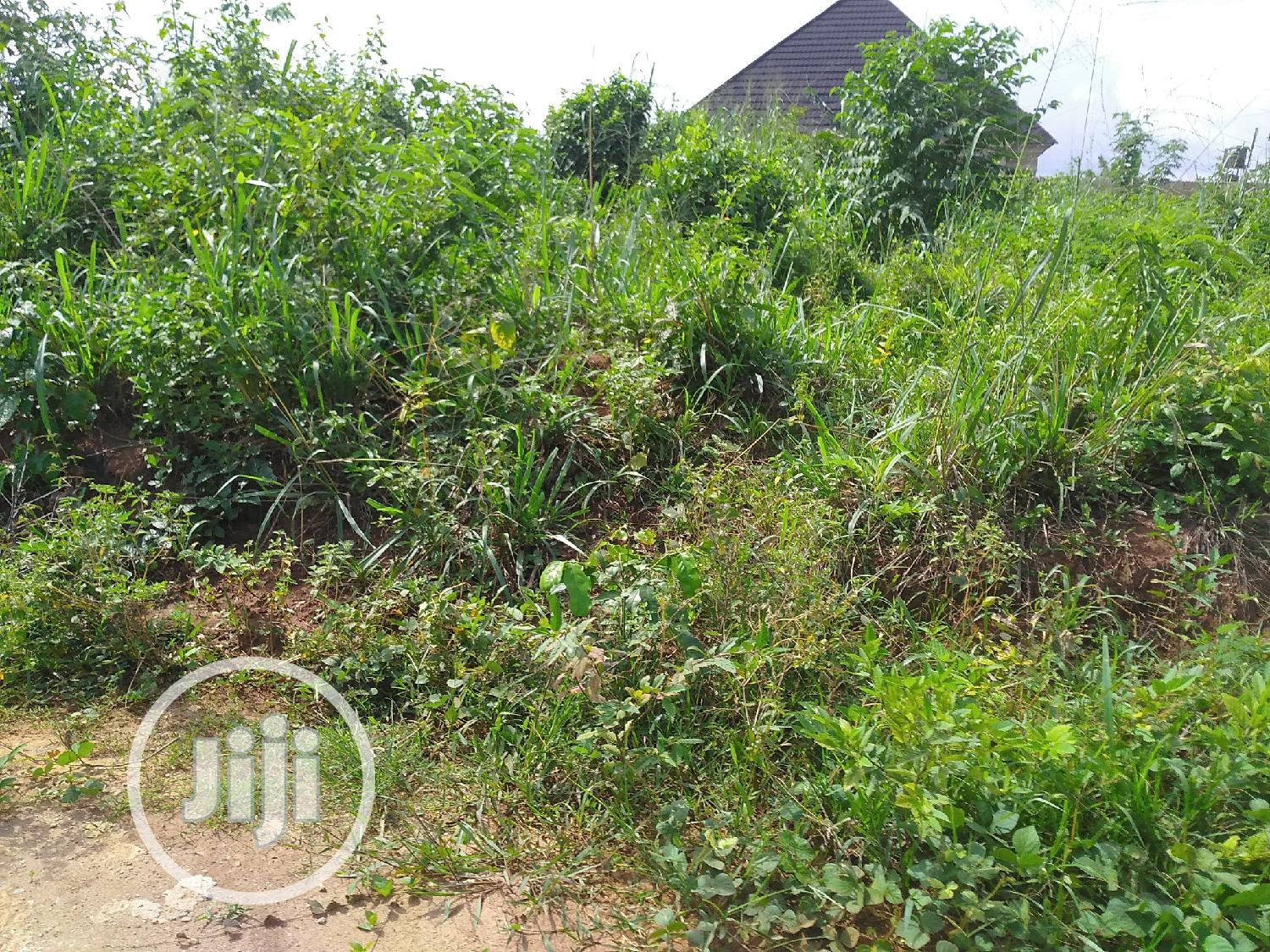 Landed Property For City After Estate Gate Aruogba. | Land & Plots For Sale for sale in Benin City, Edo State, Nigeria