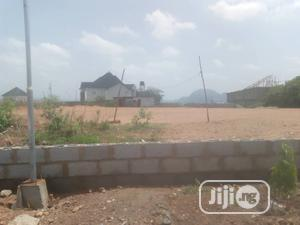 For Sale 2500sqm, C Of O Residential Plot, Asokoro   Land & Plots For Sale for sale in Abuja (FCT) State, Asokoro
