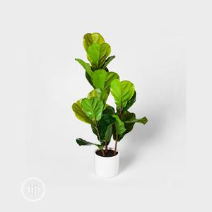 Fake Plant For Office/Hotel/Church Decoration | Garden for sale in Lagos State, Ikeja