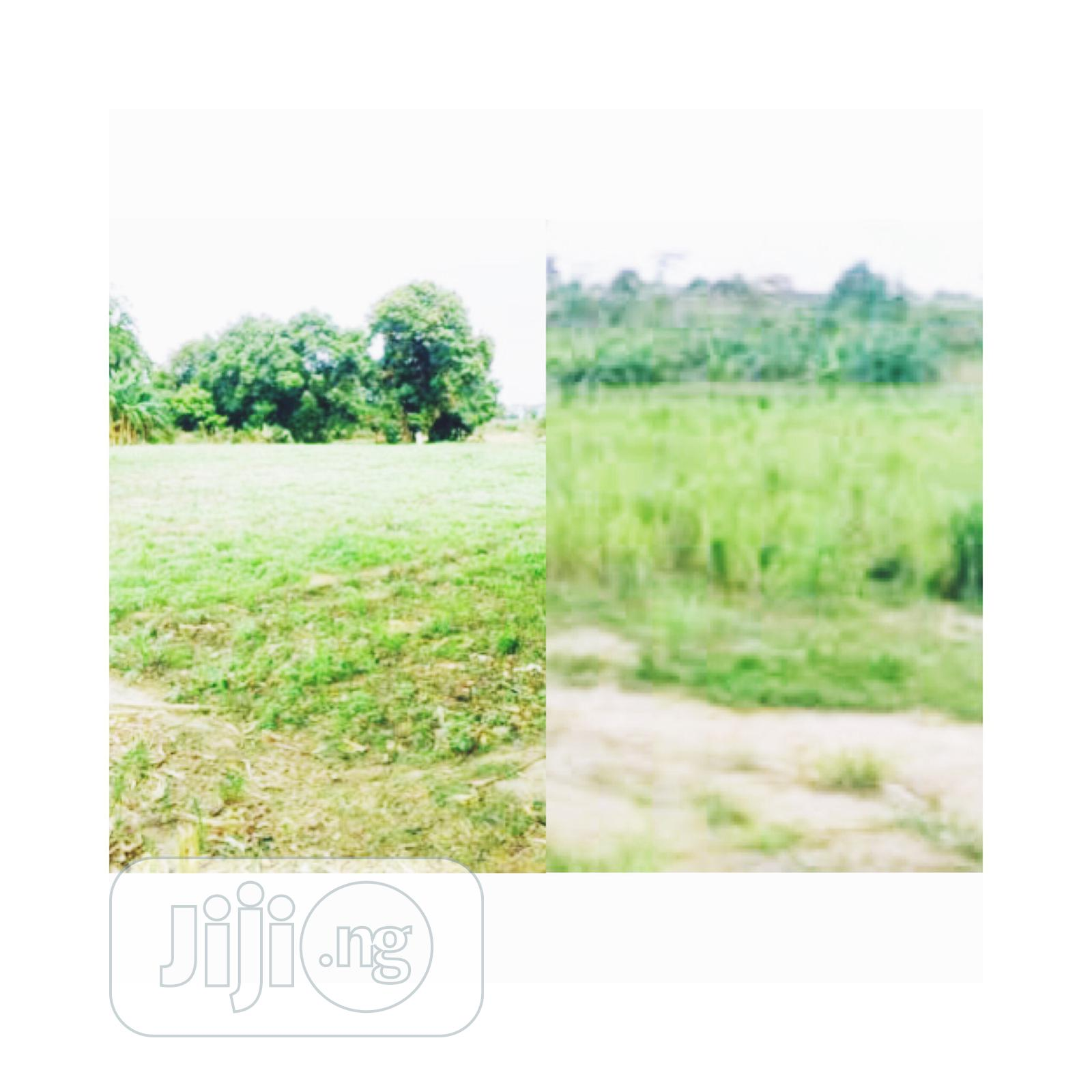Dry Plots Of Land In Ajah, Lagos For Sale