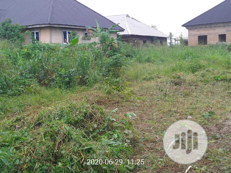 50x100 For Sale At Aruogba After Iyhekogba Housing Estate
