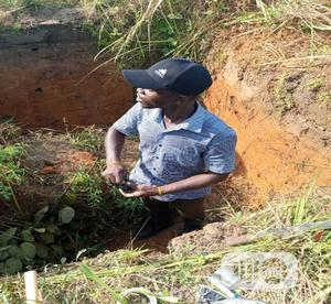 Soil Test / Soil Survey Services   Landscaping & Gardening Services for sale in Delta State, Udu