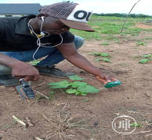 Agronomist Service Contractor   Landscaping & Gardening Services for sale in Delta State, Udu