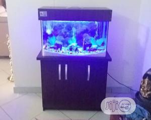 Portable Aquarium | Fish for sale in Lagos State, Lekki