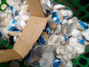 Shells For Sale | Pet's Accessories for sale in Lagos State, Surulere