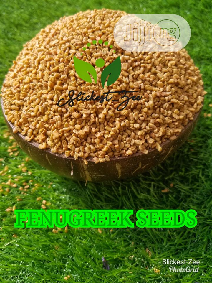 Archive: All Organic Seeds Available