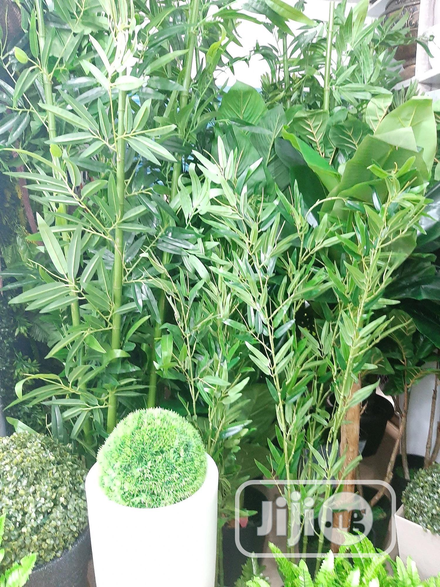 Fake Plants (Artificial Plants) Indoor Decor