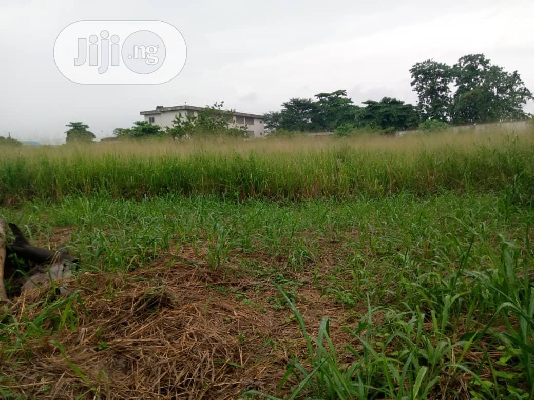 6,541.63 Sqm Land For Leasing