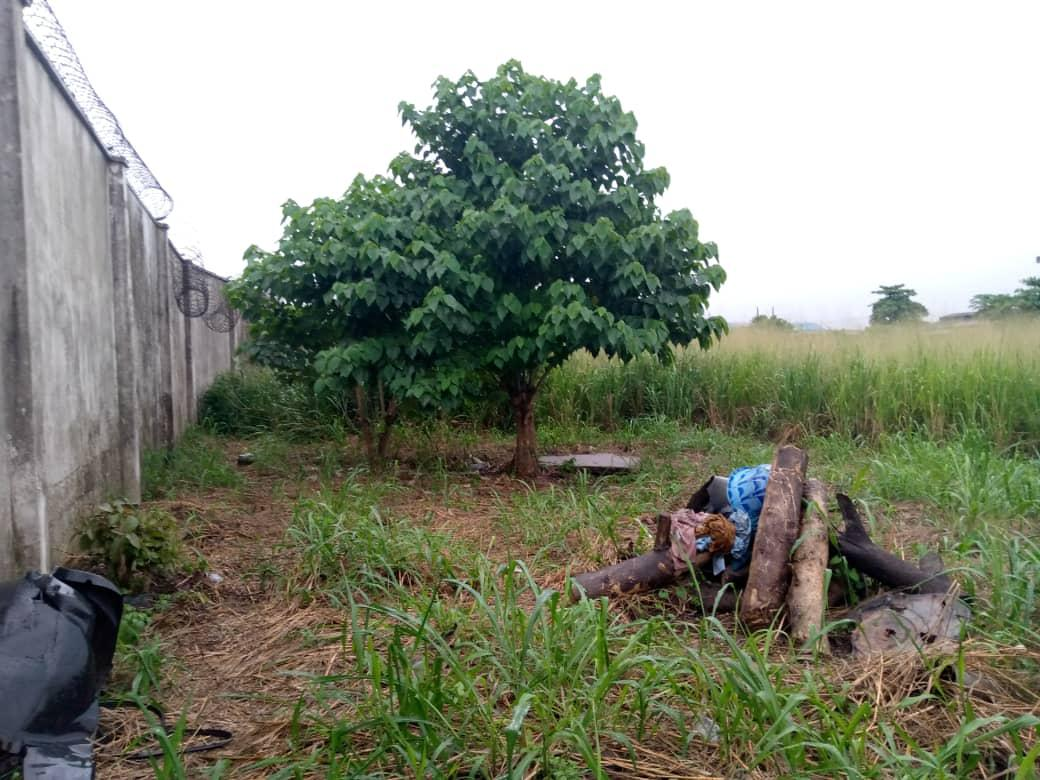6,541.63 Sqm Land For Leasing | Land & Plots for Rent for sale in Ikeja, Lagos State, Nigeria