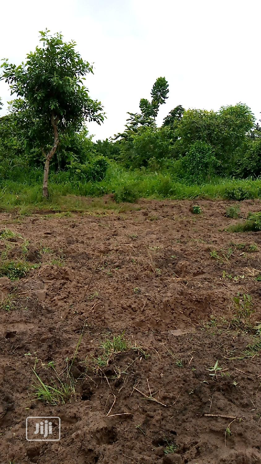 Acres of Farm Land for Sale at Araromi Owode via Ibese Town