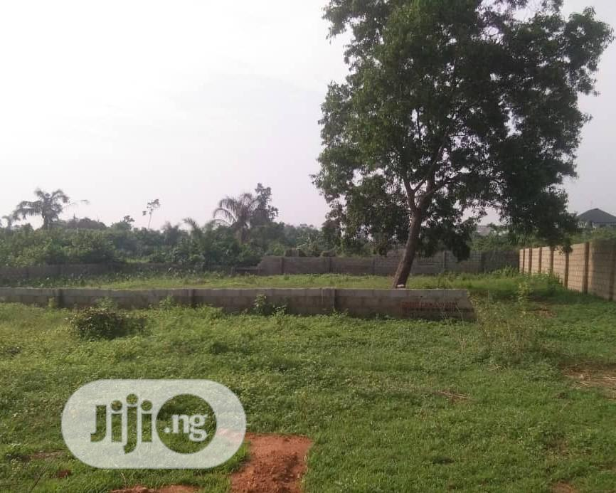 Archive: Plots Of Land For Sale At Amuwo Odofin Lagos.