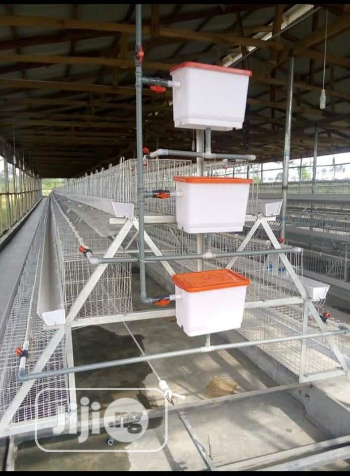 Premium Poultry Battery Cage Birds
