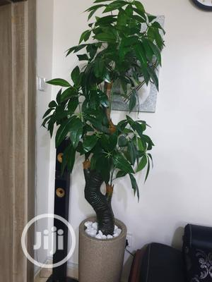 Artificial Plant For Home And Offices   Garden for sale in Lagos State, Surulere