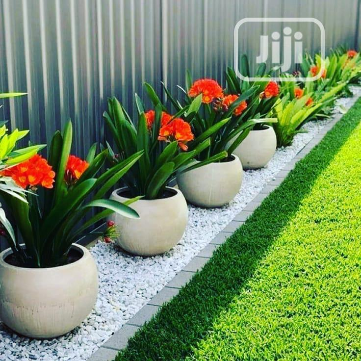 Classy And Contemporary Backyard Designs | Landscaping & Gardening Services for sale in Ikeja, Lagos State, Nigeria