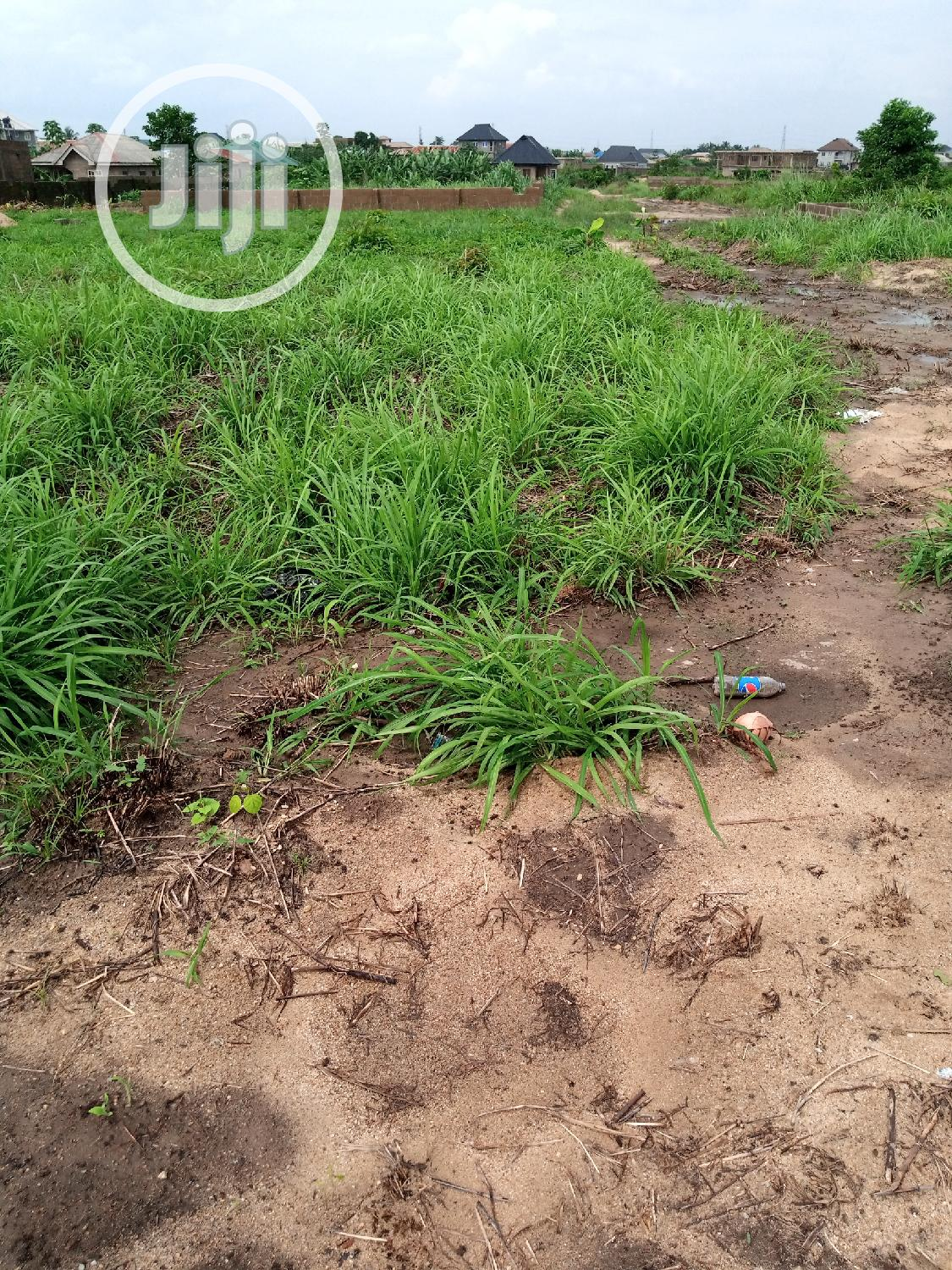 Affordable Dry Land For Sale