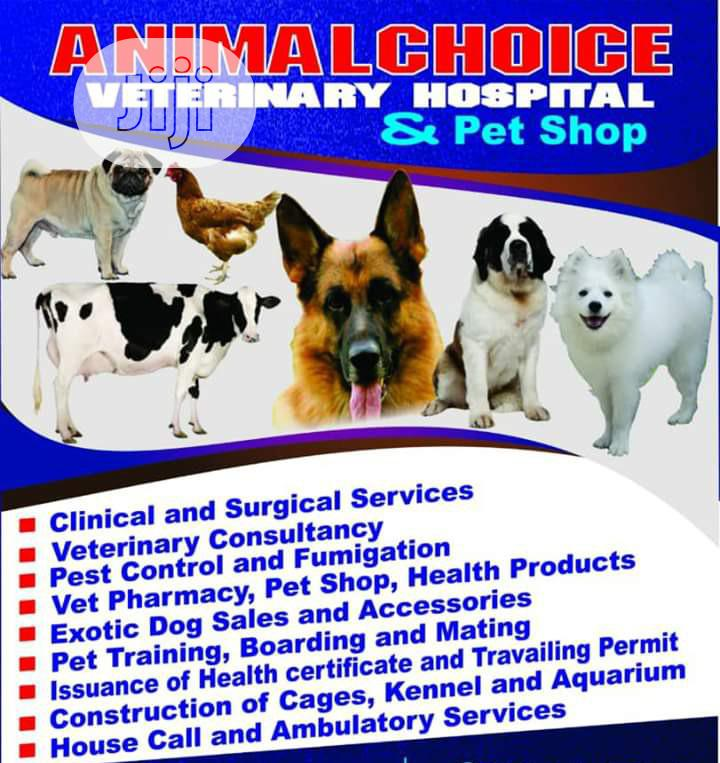 Competent And Well Experienced Veterinary Doctor