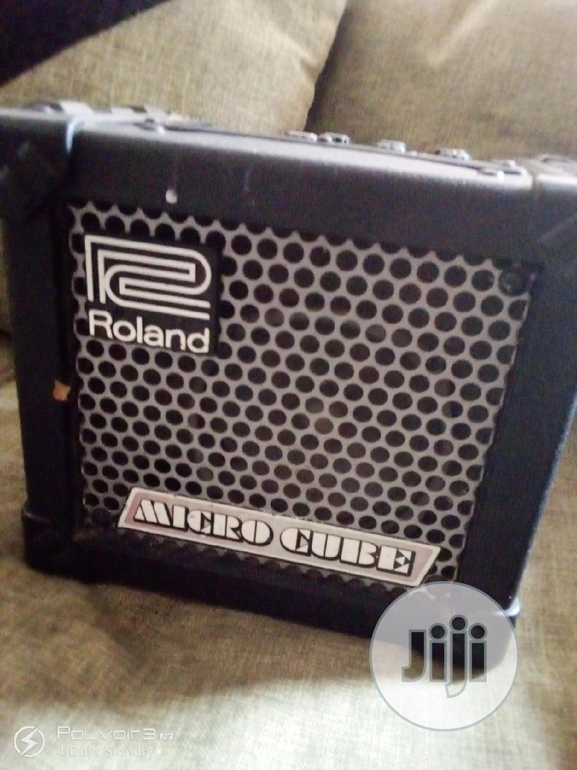 Roland Battery/Electric Combo With Effects