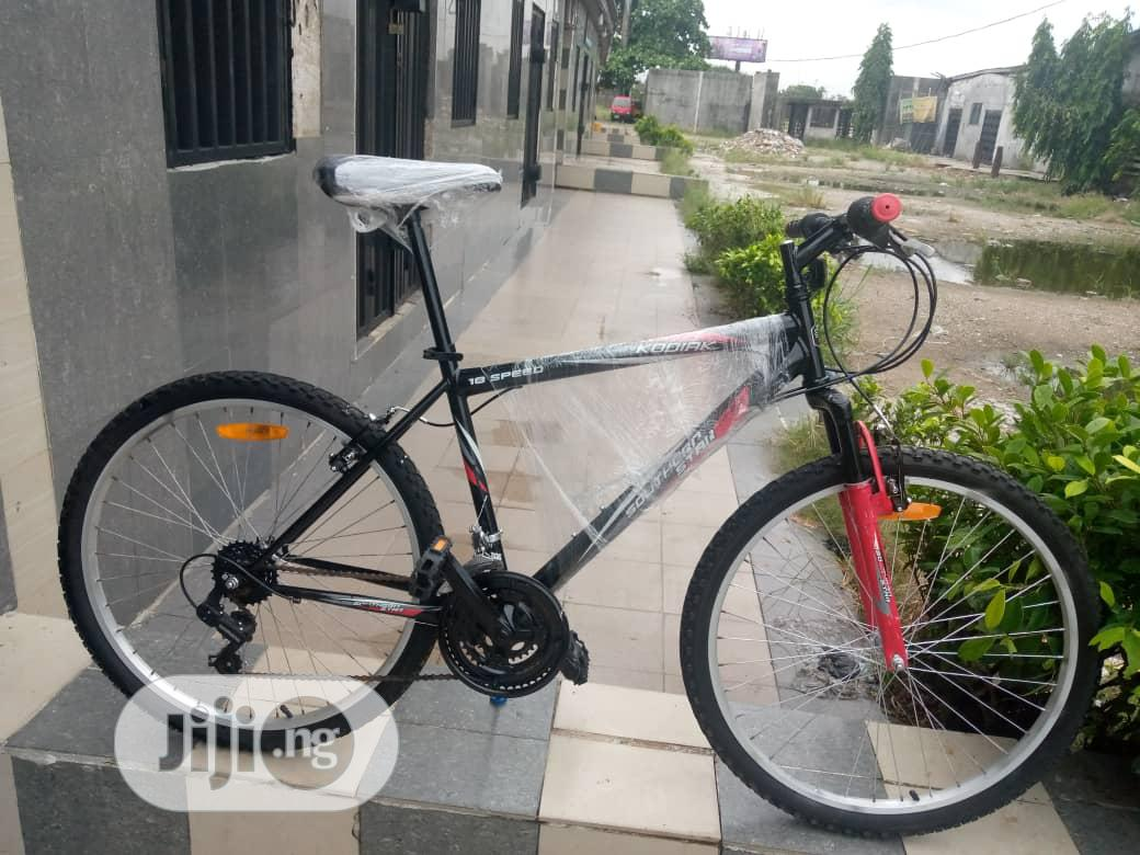 Adult Quality Bicycle
