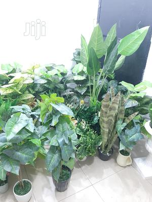 Decorate Your Mini Studio With Artificial Plants   Garden for sale in Lagos State, Ikeja