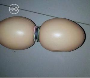 Magnetic Egg Of Arousal