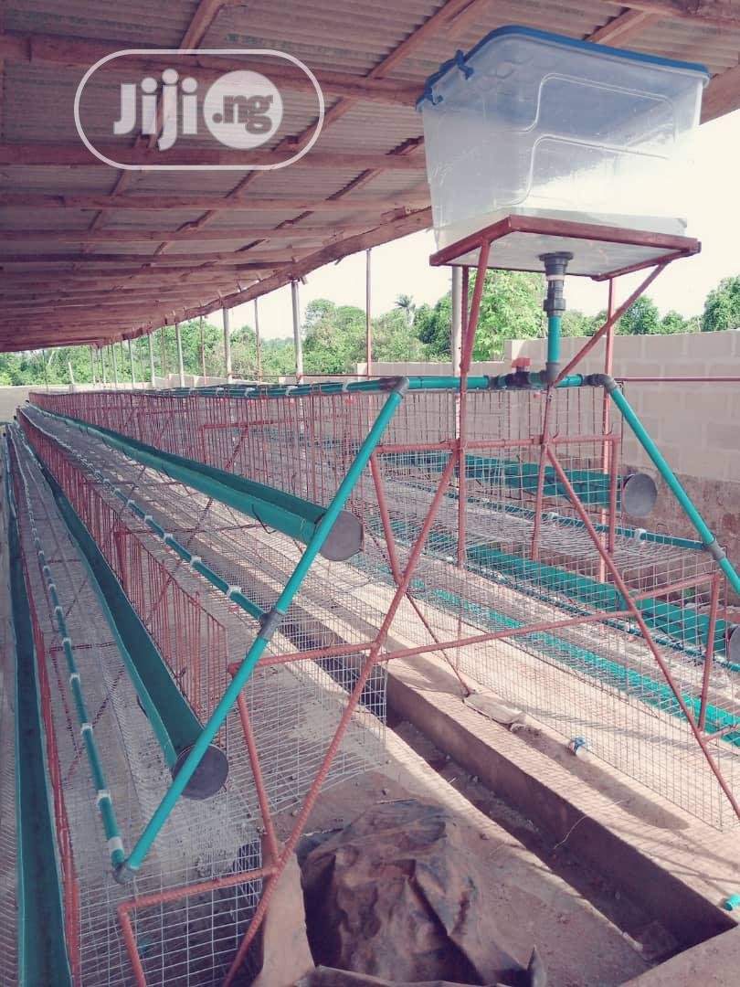 Battery Cage For Birds