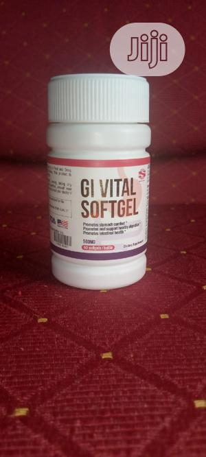 Norland Gi Softgel For Ulcer Permanent Cure And Heart Burns   Vitamins & Supplements for sale in Ogun State, Ilaro
