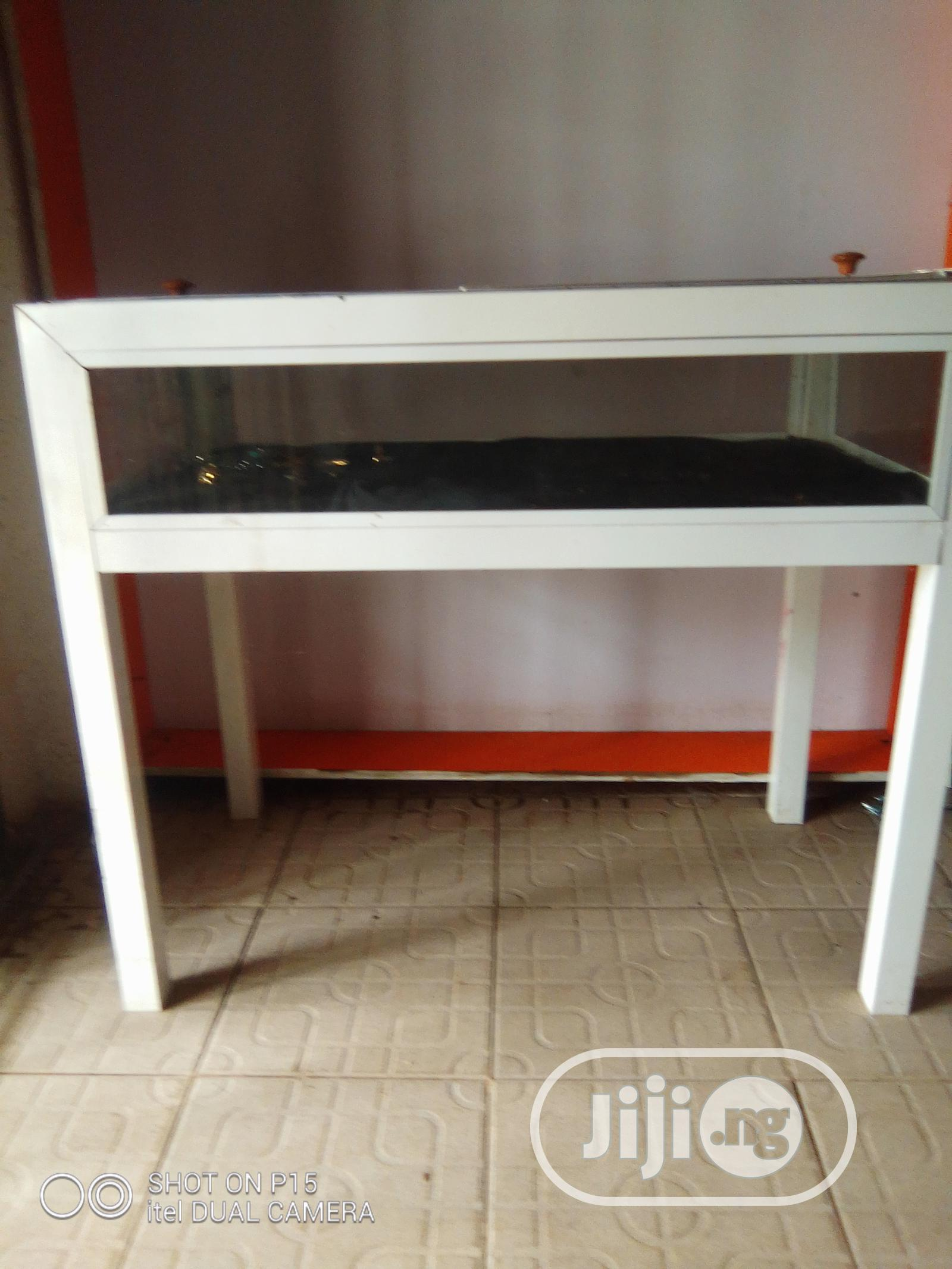 Archive: Fairly Used Products Display Case