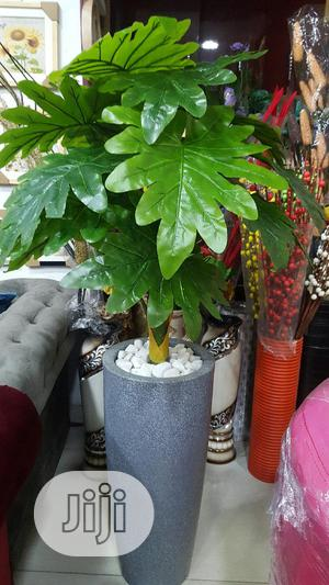 Artificial Plants   Garden for sale in Lagos State, Surulere