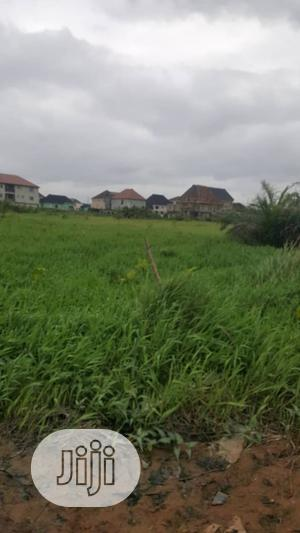 50 Plots of Land for Sale Off Ago Palace Way Okota Isolo | Land & Plots For Sale for sale in Lagos State, Isolo