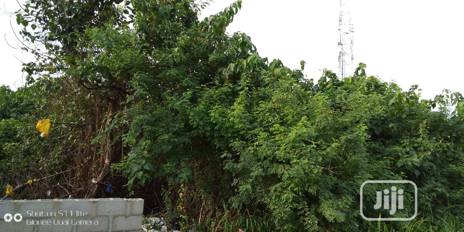 Lagosian Delight a Plot of Land in a Good Location at Lekki