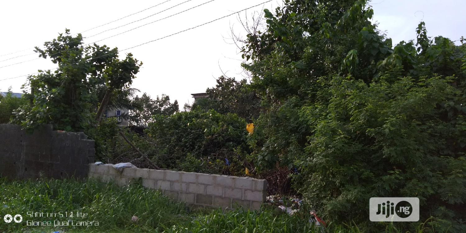 Lagosian Delight a Plot of Land in a Good Location at Lekki | Land & Plots for Rent for sale in Lekki, Lagos State, Nigeria