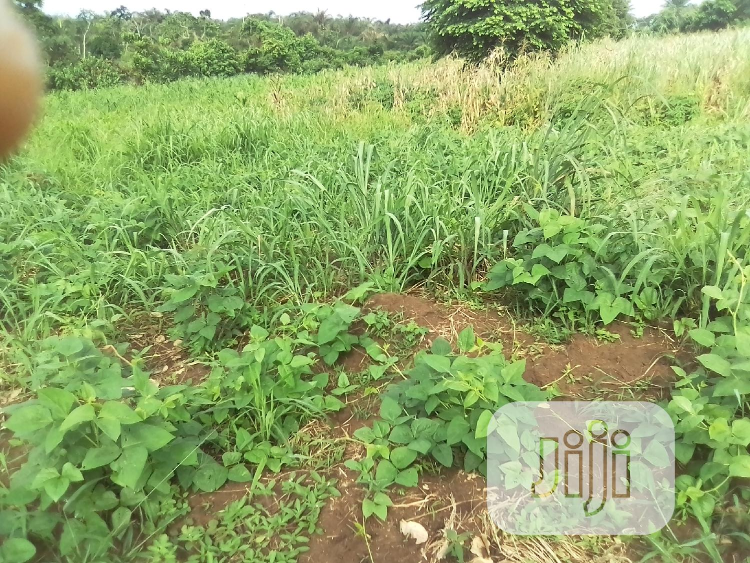 Perimeter Certificate of Occupancy, Registered Survey Plan | Land & Plots For Sale for sale in Badagry, Lagos State, Nigeria