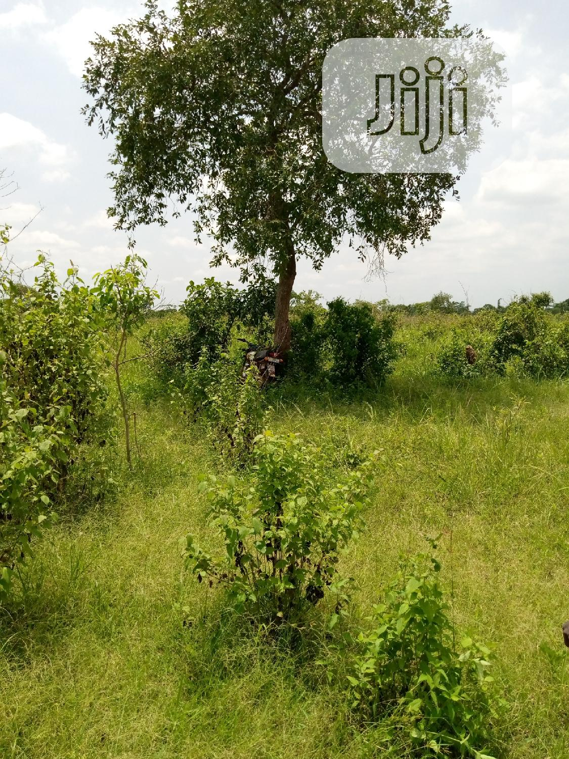 Farm Land For Lease | Land & Plots for Rent for sale in Obafemi-Owode, Ogun State, Nigeria