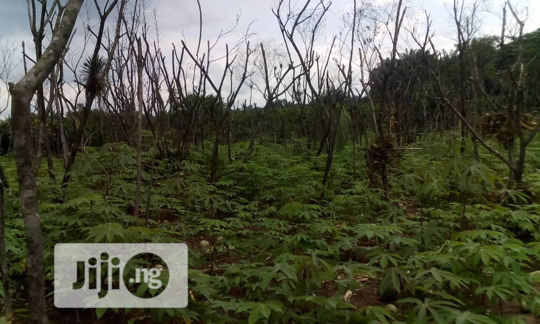 Hectares Of Land For Sale At Highbrow Area Of Abuja