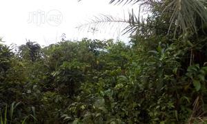 Multipurpose 2ha Of Land For Sale High Brow Area Of Abuja   Land & Plots For Sale for sale in Abuja (FCT) State, Kubwa