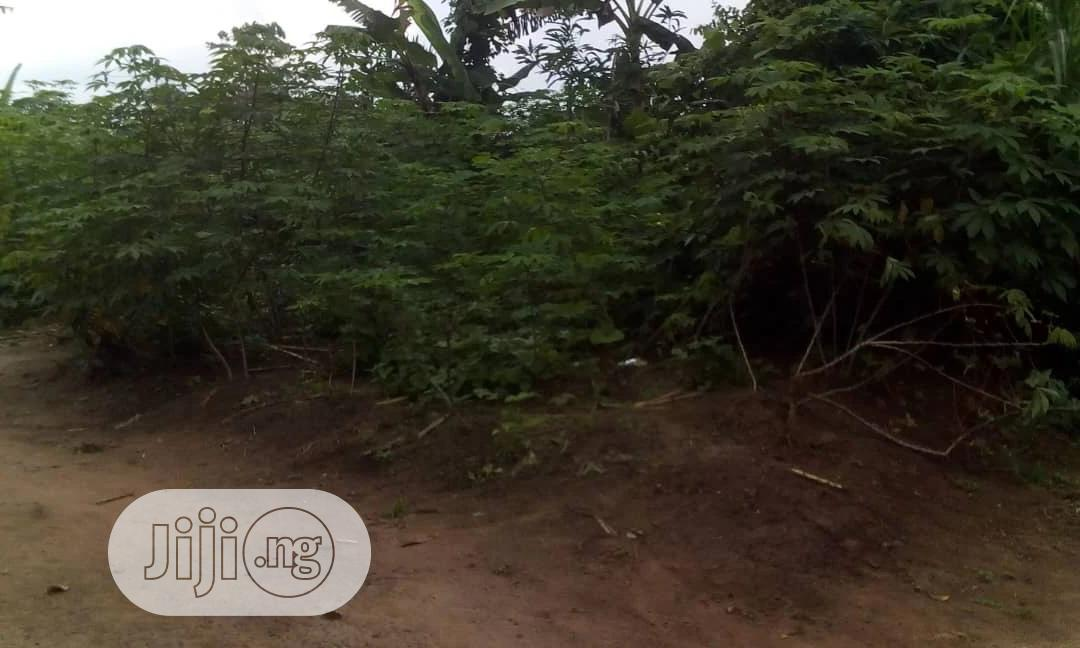 Hectares Of Land For Sale At Highbrow Area Of Abuja | Land & Plots For Sale for sale in Garki 1, Abuja (FCT) State, Nigeria