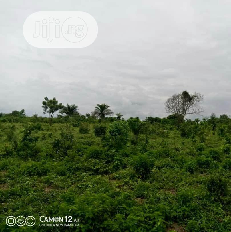 Cheapest Plot Of Land For Sale In Ibadan. Northern Ireland | Land & Plots For Sale for sale in Ido, Oyo State, Nigeria