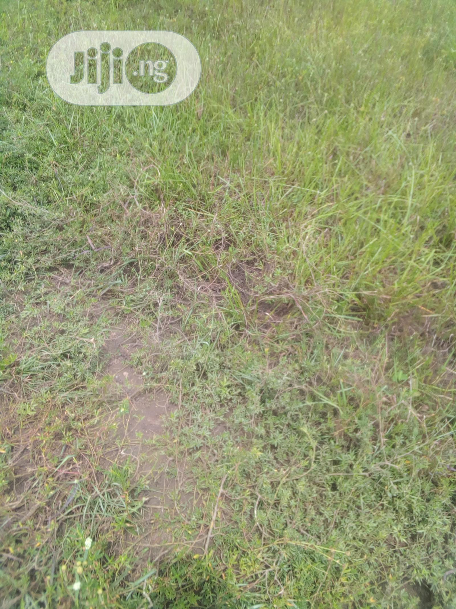 Archive: Land For Lease At Lagos Business School ,Lekki Epe Lagos Rd.