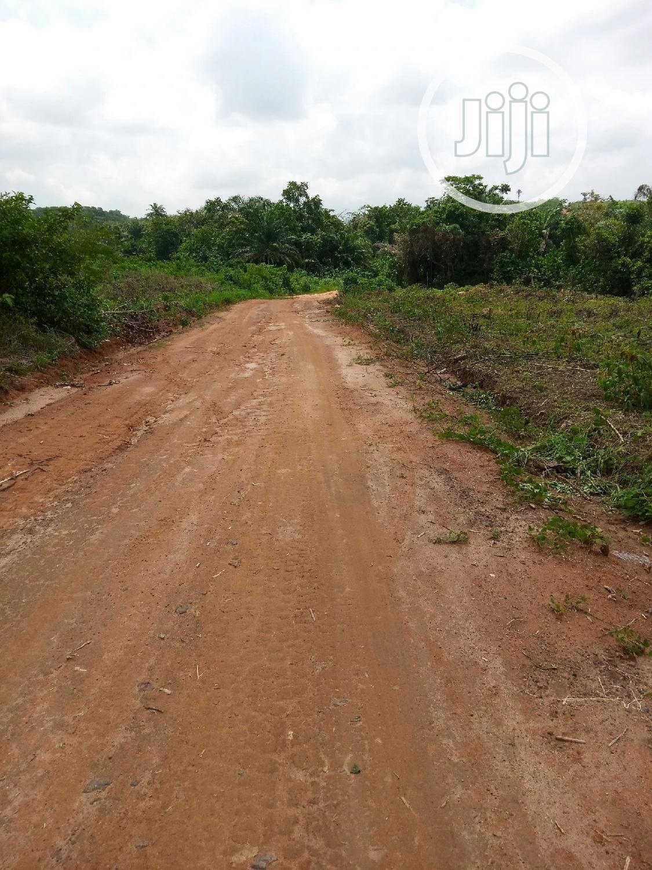 Farm Land For Sale At Mojoda ,Epe,Lagos   Land & Plots For Sale for sale in Epe, Lagos State, Nigeria