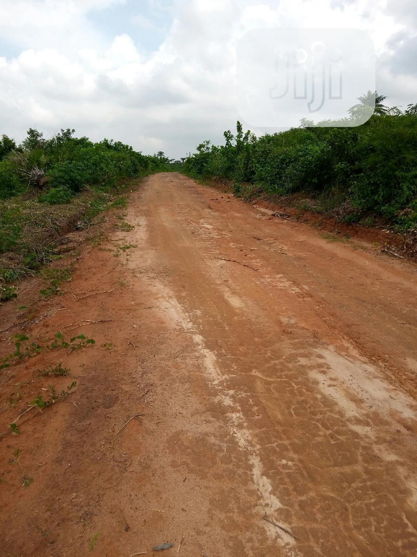 Farm Land For Sale At Mojoda ,Epe,Lagos