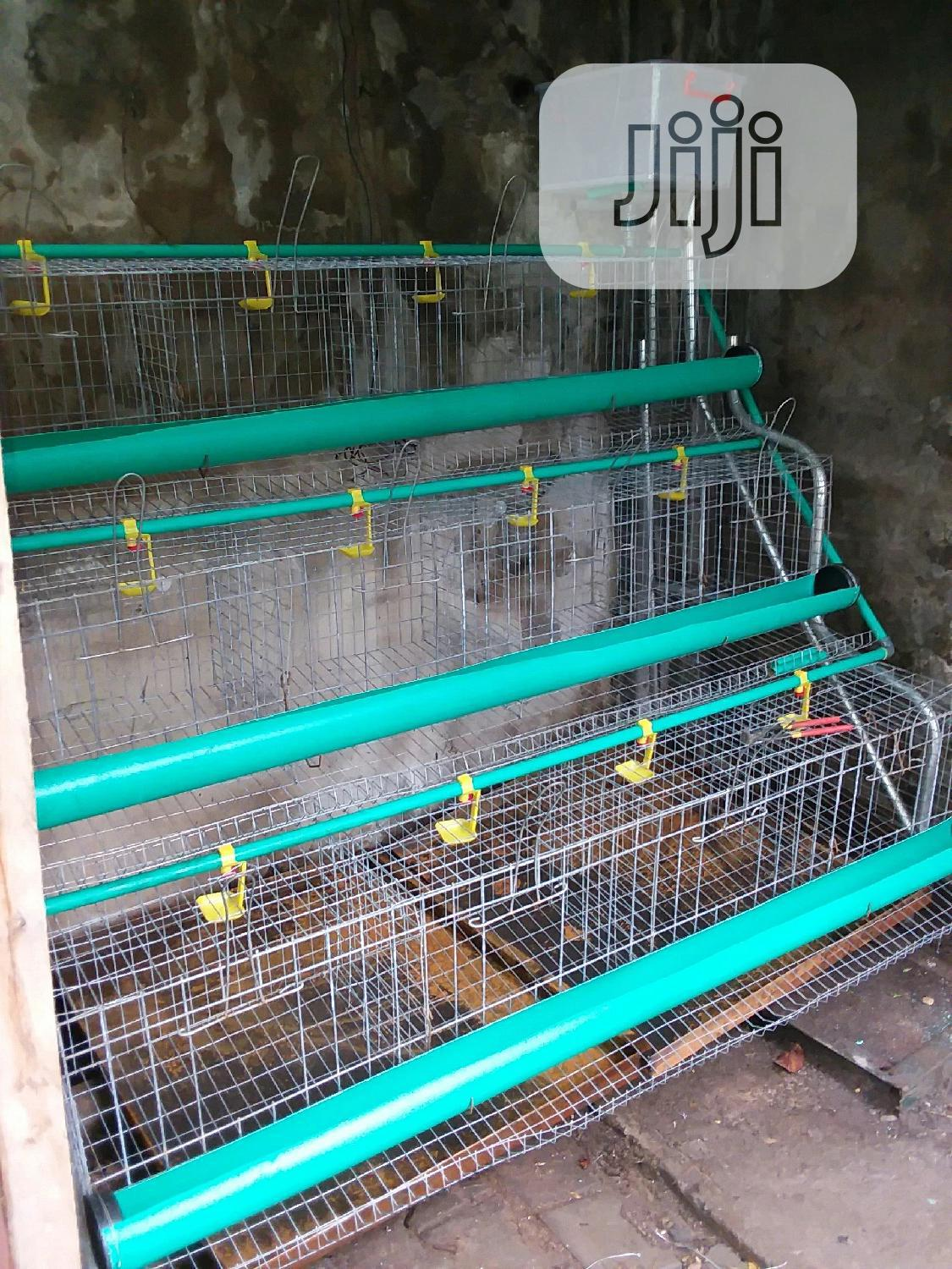 Derasaq Farms Battery Cage For Layers With Full Accessories | Farm Machinery & Equipment for sale in Alimosho, Lagos State, Nigeria
