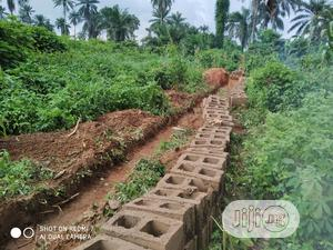 Acre of Land for Sale at Alaba Ibadan | Land & Plots For Sale for sale in Oyo State, Akinyele