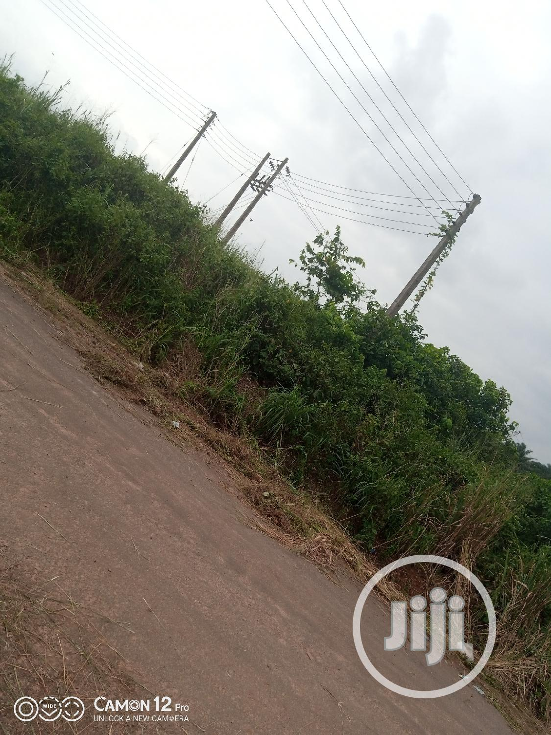 Virgin Land for Sale in Epe Lagos