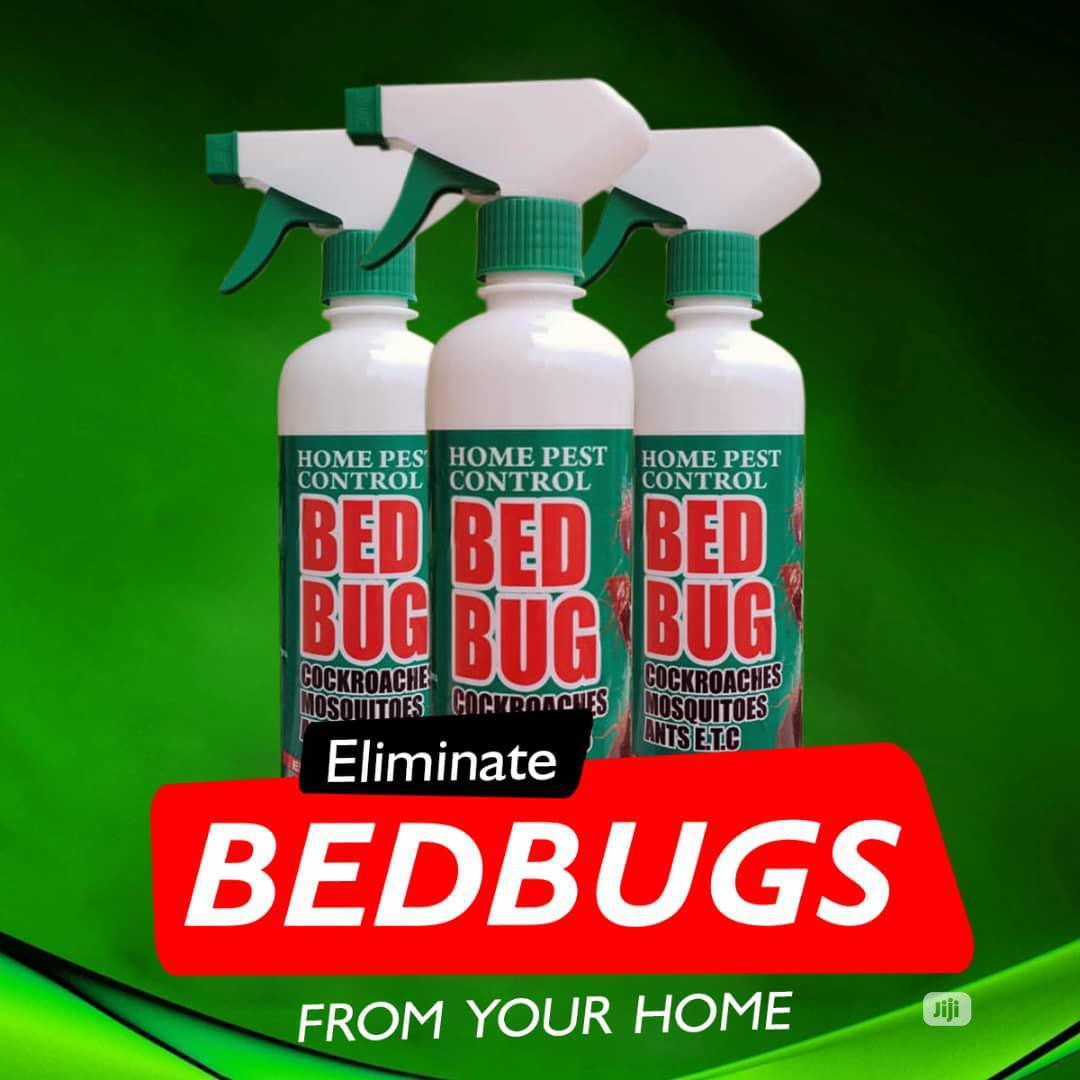 Bedbug Killer