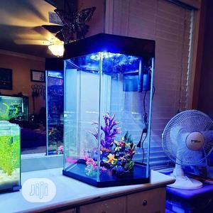 Aquarium For Lovely Palors | Fish for sale in Lagos State, Surulere