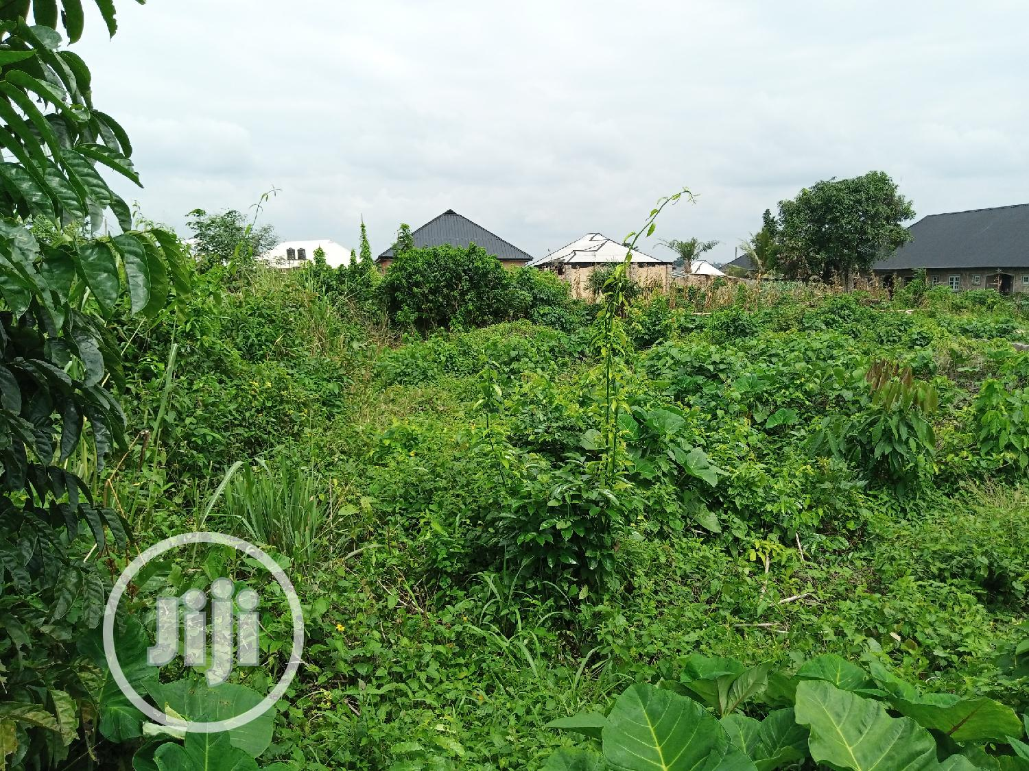 100/100 Land for Sale at Azagba, Benin City