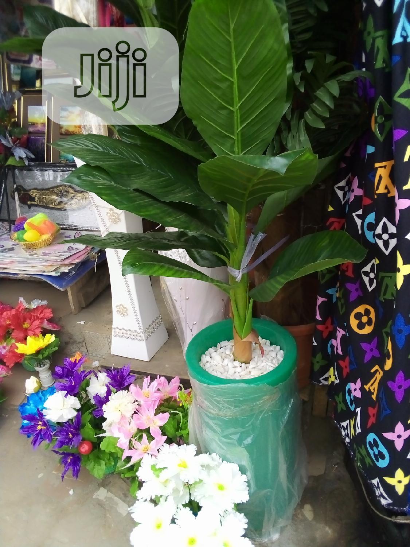 Unique Garden Tree Inside Fibre Flower Pots